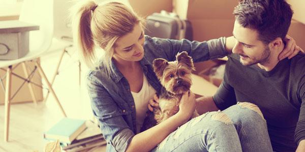 �Como adaptar un perro a una casa nueva?